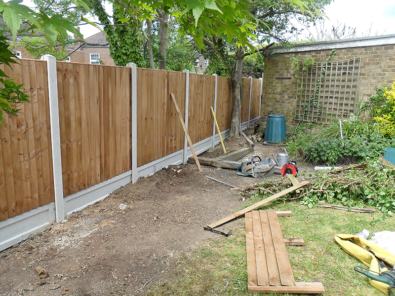 Tree Garden Work D L Landscapes Ltd